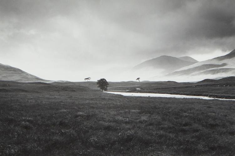 Fay Godwin (1931-2005) - Four Trees, Rannoch Moor, 1981