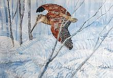Charles Frederick Tunnicliffe (1901-1978) - Woodcock