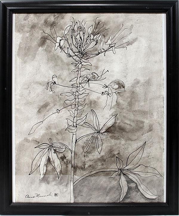 ANNA MUCCIOLI, PENCIL & INK DRAWING, 20