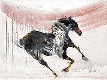Gino Hollander. Horse galop