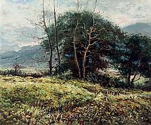 Damián Torres. Sunset  landscape