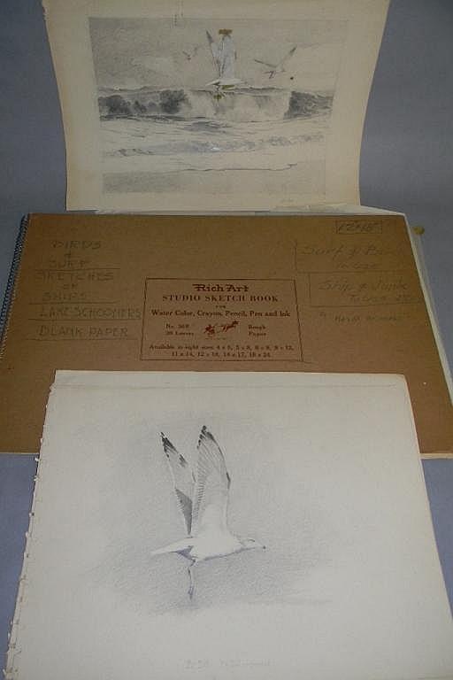 M. MACDONALD ART PORTFOLIO SHIPS BIRDS, SCHOONERS