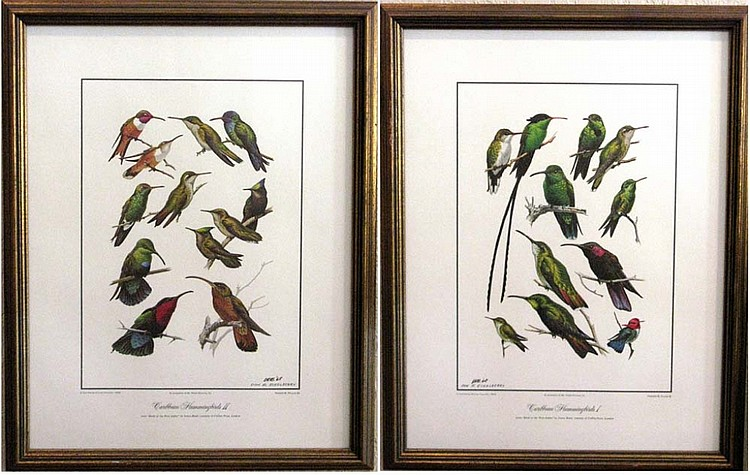 2 DON ECKELBERRY SIGNED HUMMINGBIRD LITHOGRAPHS