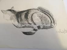Richard Carle Cat Drawing 1982