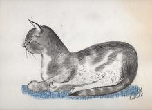 Cat Drawing by Richard Carle
