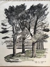 Richard Carle 1981 Drawing