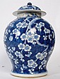 A 19th century large blue and white Chinese