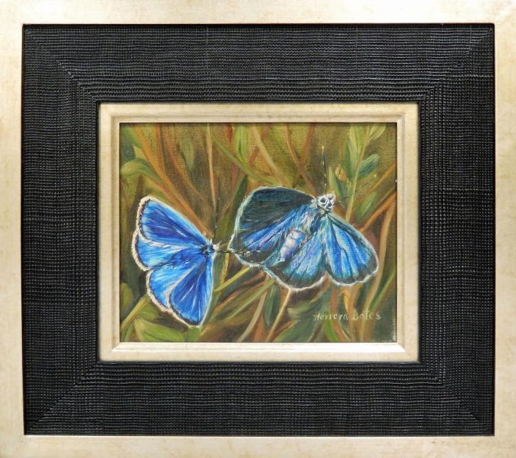 HERRERA BATES, BLUE BUTTERFLIES