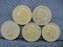 (5) 1903 Indian Head Cents