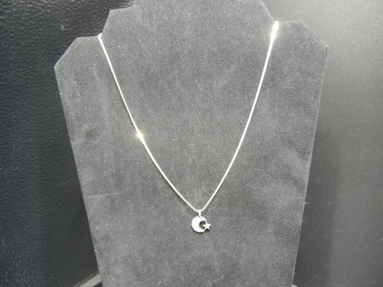 Sterling Silver Necklace W/Turquoise Moon