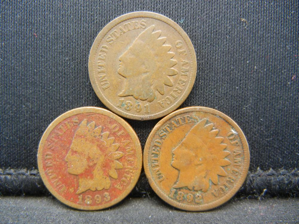 1891 1892 1893 Indian Head Cents.