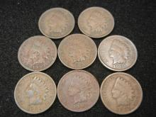(8) 1901 Indian Head Cents