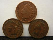 1895, 1898, & 1899 Indian Head Cents