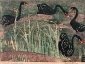 Dorothea (Dorrit) Black 1891-1951