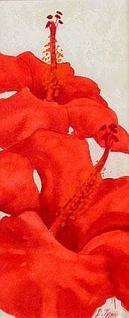 Resultado de imagem para Darryl Trot t(1942-2004