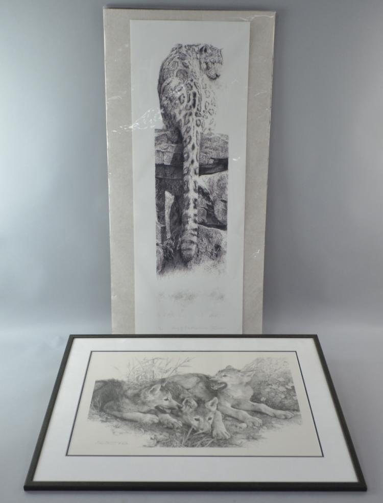 Leon Evans limited edition print of a Mountain Lio