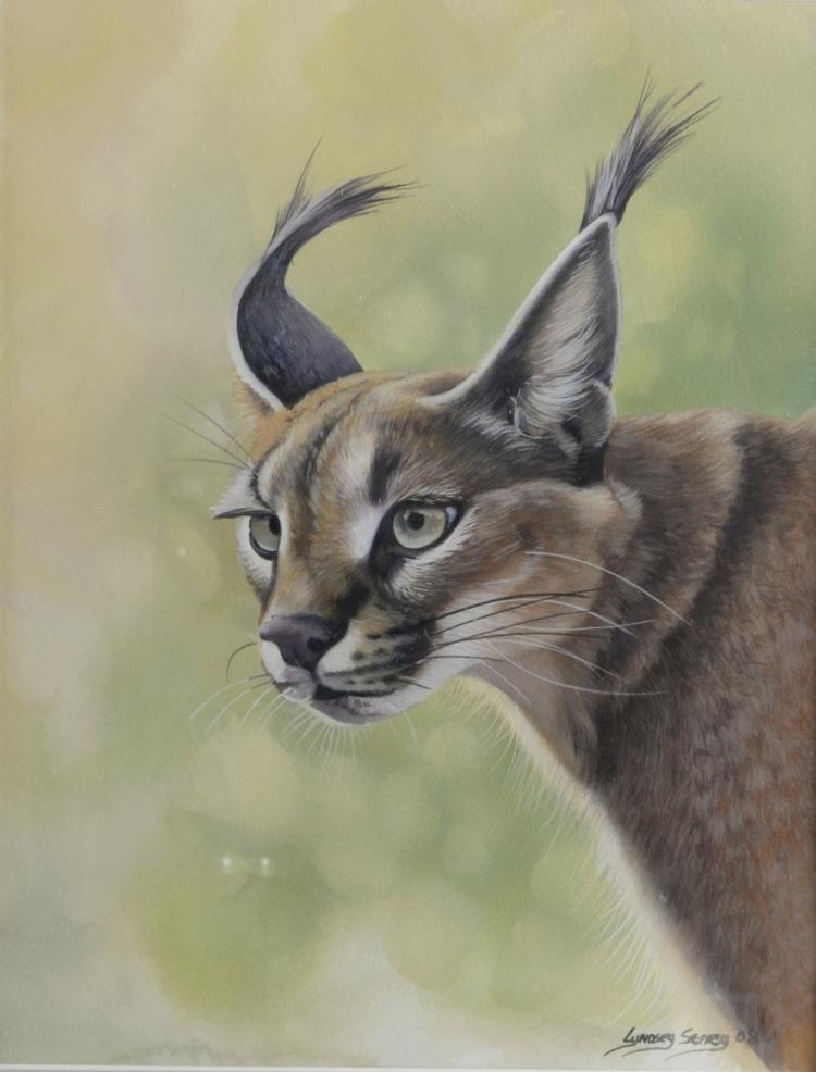 Lyndsey Selley 'Craacal' limited edition watercolo