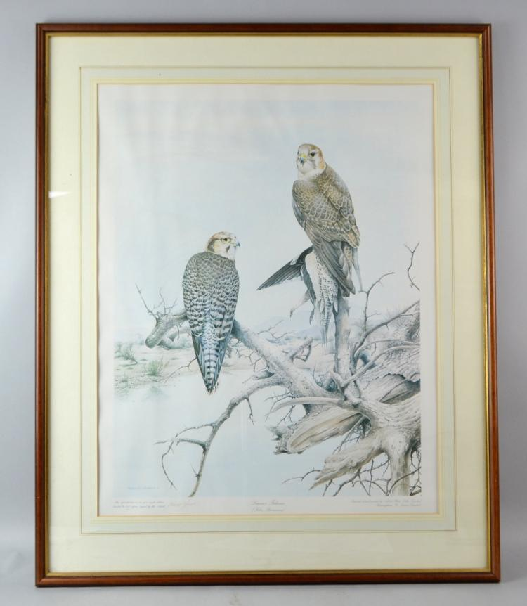 Terence Lambert 'Lanner Falcons' limited edition p