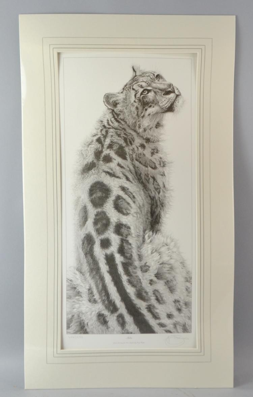 Gary Hodges 'Sabu' limited edition print 476/1250,
