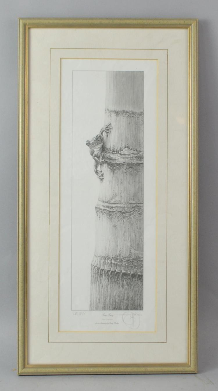 Gary Hodges 'Tree Frog' limited edition print 280/