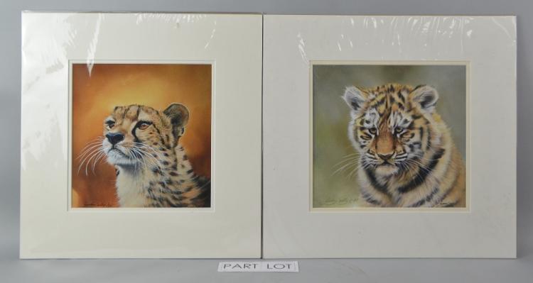 Lyndsey Selley four prints: Cheetah 3/395 26 x 25