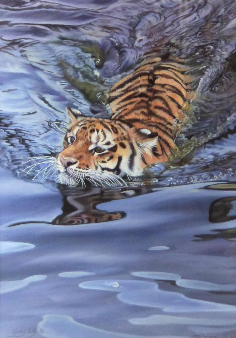 Lyndsey Selley limited edition print of a Tiger Cu