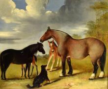 C. Green. Horses and Foals with a collie dog in a