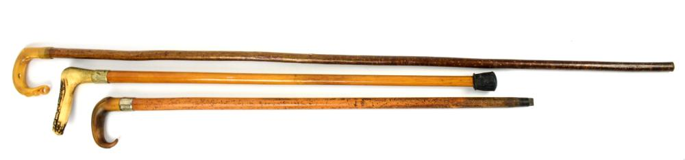 Early 20th century Scottish shepherd's crook and t