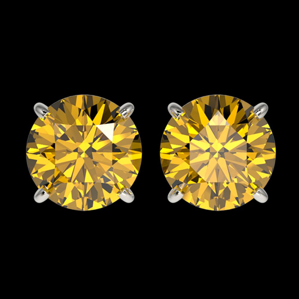 2.50 CTW Certified Intense Yellow SI Diamond Solitaire Stud Earrings 10K White Gold - REF-427W5F - 33108