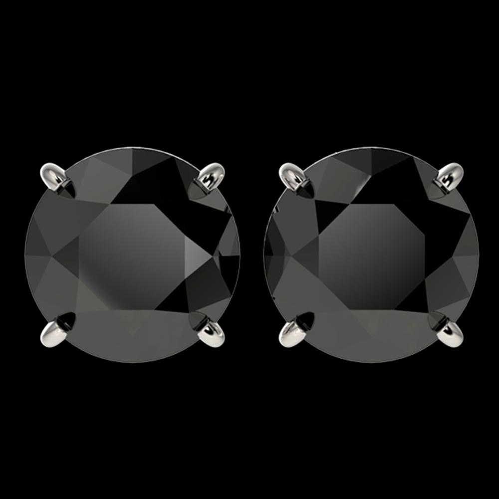 4 ctw Fancy Black Diamond Solitaire Stud Earrings 10K White Gold - REF-84V2Y - SKU:33134