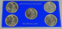 Five Morgan Dollars