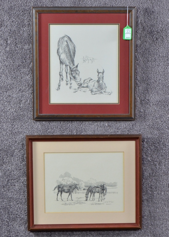 Two Etchings Of Foals By Tony Oswald