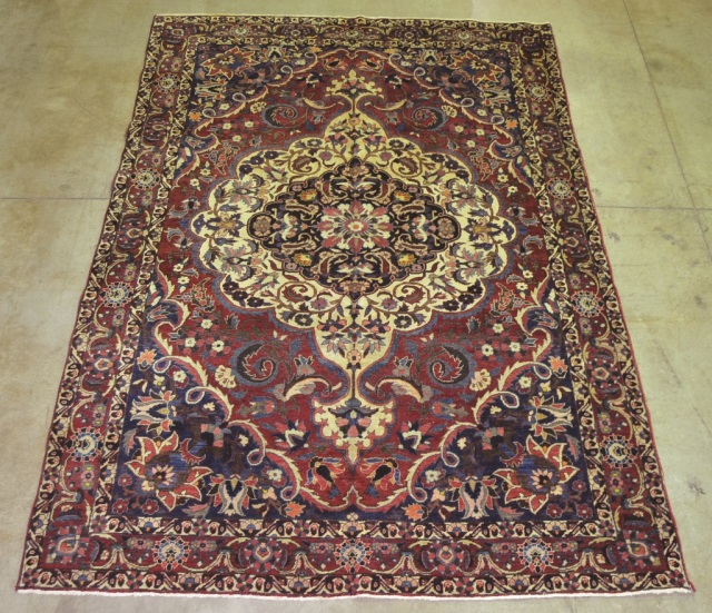 Wool on Cotton Oriental Bakhtiari Rug