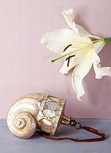 Poire à poudre formée d'une coquille de burgau et de plaques de nacre avec embout en os, bouchon en laiton. Le réceptacle est un burgau nacré de la famille des genus stombus, complété d'éléments décoratifs, certains aux bords découpés, posés en