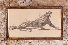 Paul JOUVE (1878-1973)  Panthère agonisant    Mine de plomb et rehauts de crayon de couleur sur papier cartonné crème, signé en bas à gauche et portant une inscription manuscrite au dos