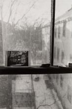 Lee Friedlander (1934) - Putney VT, Central Park, Cambridge, Mariposa, 1975