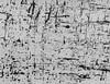 PAOLO MONTI (1908 - 1982), Paolo Monti, €500