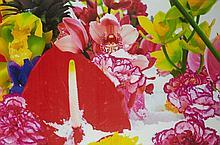 Winter Garden 6, 2004