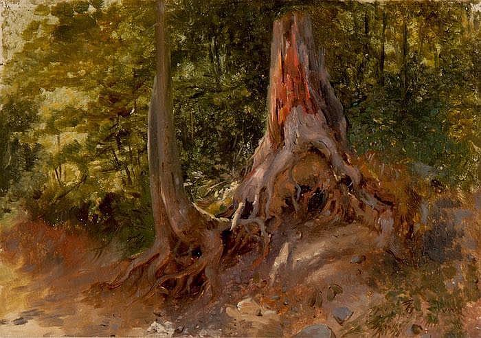 Waldpartie mit morschem Baumstrunk