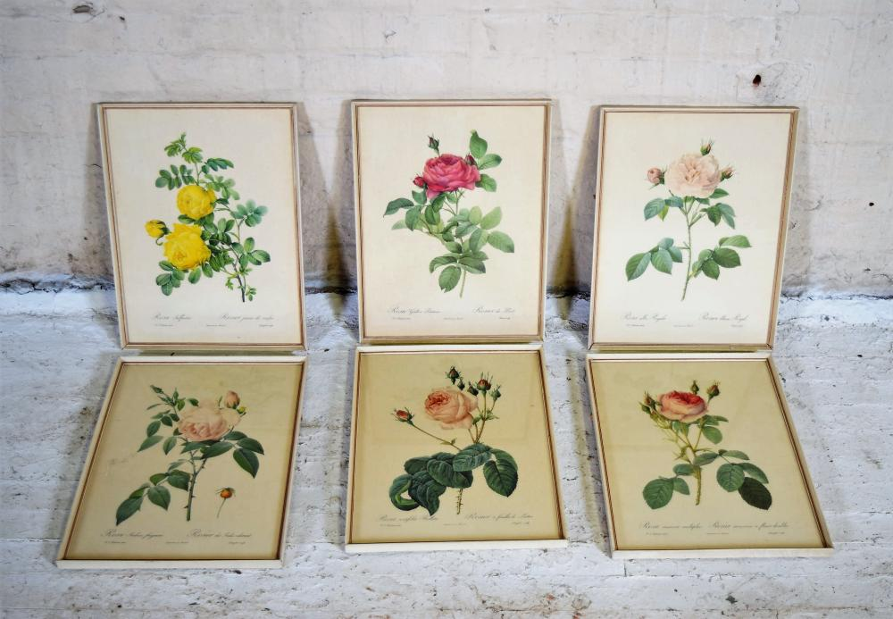 Vintage Framed Botanical Prints