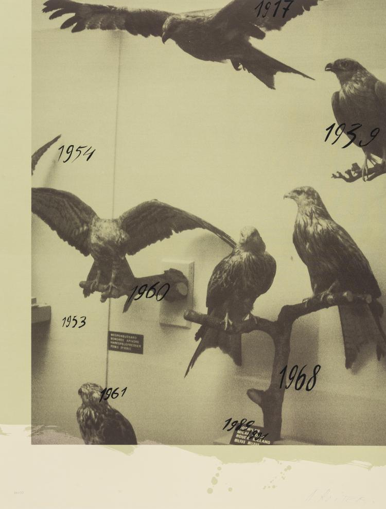 Andrei Roiter (b.1960) Hawks