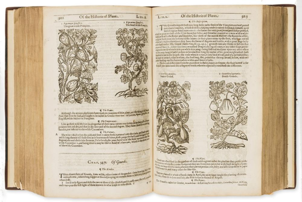 Herbal.- Gerard (John) The Herball or Generall Historie of Plantes, by Adam Islip, Joice Norton and Richard Whitakers, 1636.