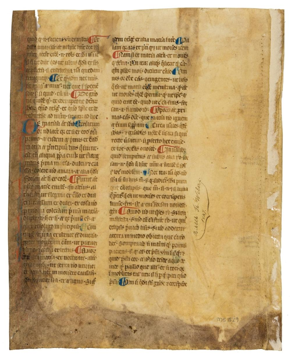 Aristotle. Metaphysica, book VIII, single leaf only, manuscript in Latin, on vellum, in a gothic bookhand, double column, 32 lines,  1 2-line initial red and blue with penwork decoration along whole …