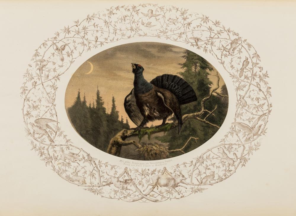Hunting.- Schmidt (Anton) Colorirte Jagd-Thiere, 16 hand-coloured lithographs, Munich, [c.1850].