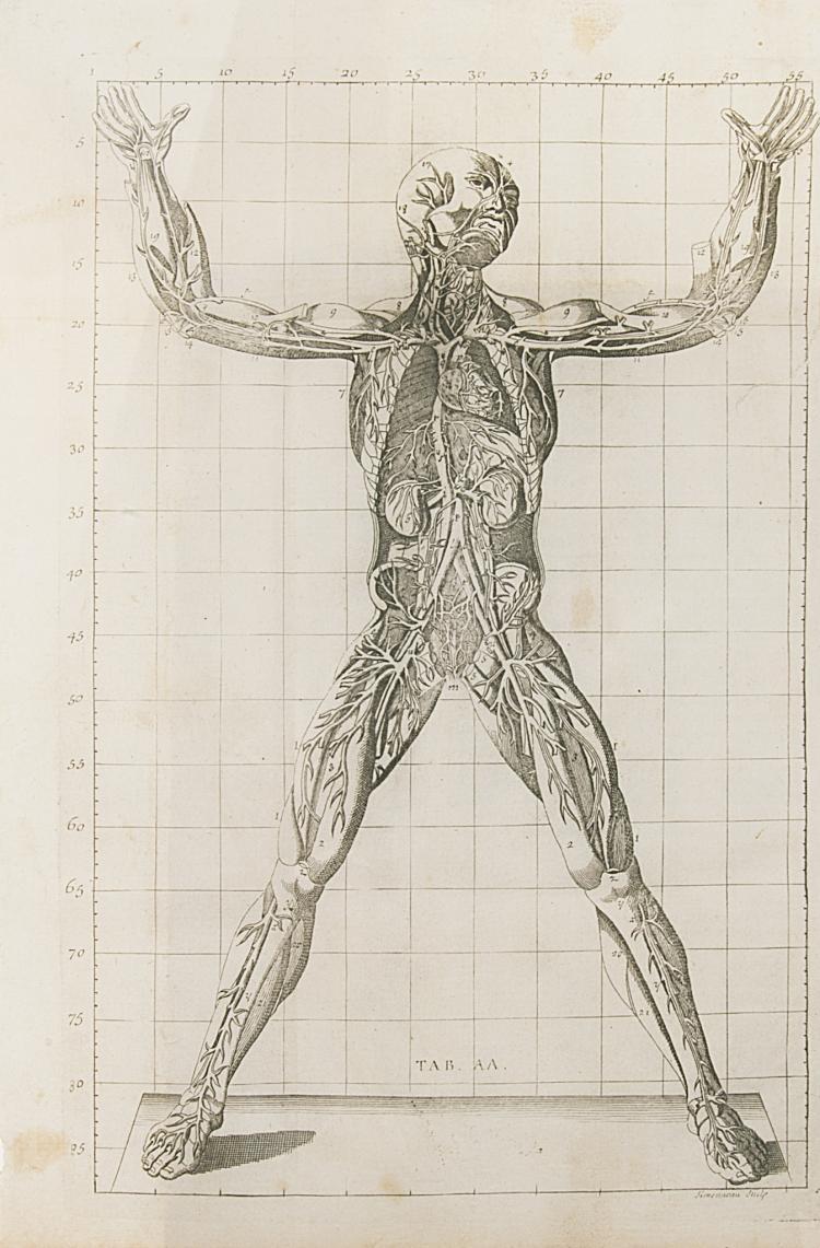 Anatomy.- Winslow (Jacques-Benigne) Exposition Anatomique de la Structure du Corps Humain, Paris, 1732 & Fau. Atlas l'Anatomie des Formes du Corps Humain, 25 h.-col. lithographs, 1867 (2)