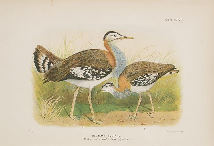 Birds.- Bannerman (David Armitage) The Birds of Tropical West Africa, 8 vol., 1930-51; and 7 others, birds (15)
