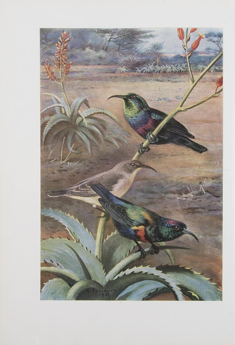 Birds.- Archer (Sir Geoffrey) and Eva M. Godman., The Birds of British Somaliland and the Gulf of Aden, 4 vol., 1937-61; and 3 others, birds (7)