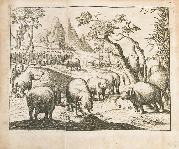 Africa.- Ludolf (Hiob) Nouvelle Histoire d'Abissinie, ou d'Ethiopie, 1st French ed., folding eng. map and 5 folding plates, mod. calf, Paris, 1684 & another, Abyssinia (20