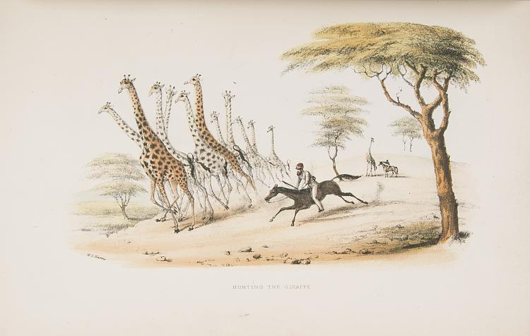 Africa.- Harris (William Cornwallis), The Wild Sports of Southern Africa, 5th ed., 25 hand-col. lith. plates, cont. half morocco, 1852 & another by Harris (4)