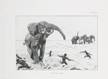 Africa.- Bell (W.D.M.), The Wanderings of an Elephant Hunter, 1st ed., orig. cl.-backed boards, 1923 & Széchenyi. Land of Elephants, 1st Eng. ed, orig. cloth, 1935 & 2 others by Bell (4)